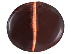 XTP629<br>Sri Lankan Cats-eye Actinolite 5.66ct 10.83x9.38mm Oval Cabochon With Gemworld Report